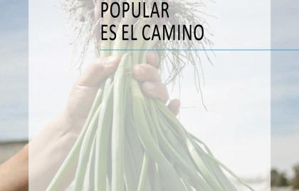IPP Libro 2016 TAPA (1)